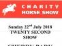 Charity Horse Show Lavant 2018