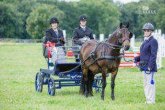 Sandra wins Novice Whip Felbridge 2017
